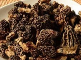 羊肚菌的功效   健康猴,新鲜羊肚菌需要煮多少分钟