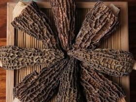羊羊肚菌煮多久会熟,哪些人和哪些病症不能吃羊肚菌肚菌怎么样呢