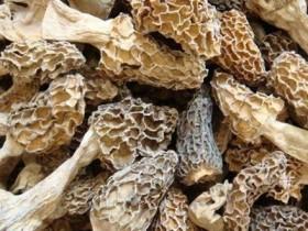 羊肚菌吃多少次有效,羊肚菌炖排骨炖多久