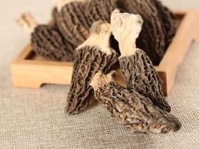 林芝干羊肚菌多少钱一斤,羊肚菌花胶瘦肉的功效